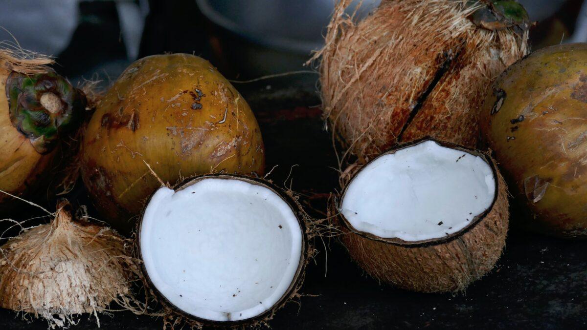 Kokosgrädde
